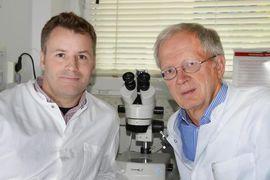 Foto: Marc-Phillip Hitz (li.) und Hans-Heiner Kramer im Labor des Kinderherzzentrums. Quelle: Thomas Eisenkrätzer