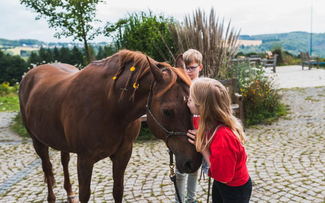 Reiterwoche – 12 herzkranke Kinder zwischen 10-15 Jahren